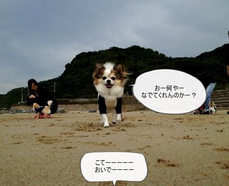 new_538.jpg