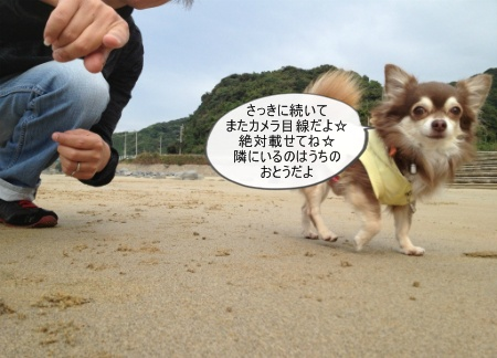new_543.jpg