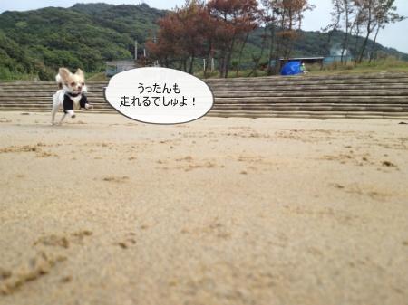 new_547.jpg