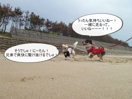 new_549.jpg