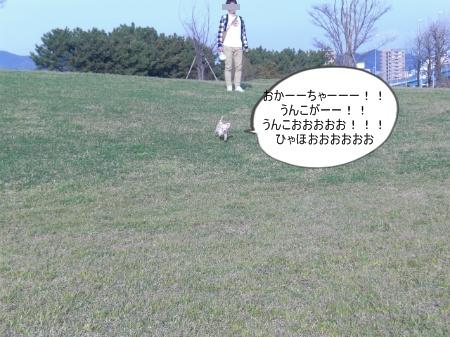 new_CIMG2870.jpg