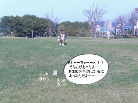 new_CIMG2871.jpg