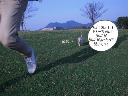 new_CIMG2872_20120519132713.jpg