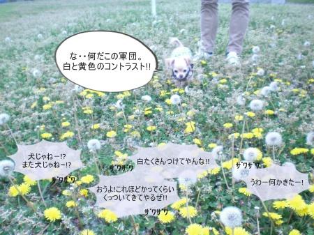 new_CIMG2949.jpg