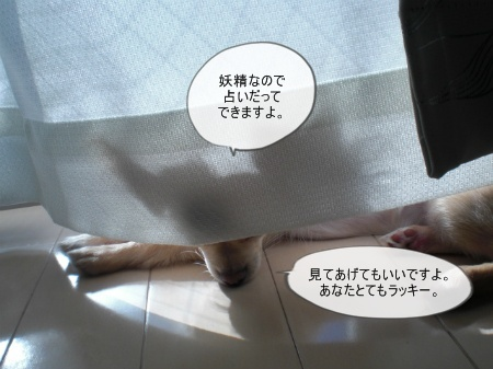 new_CIMG3029.jpg