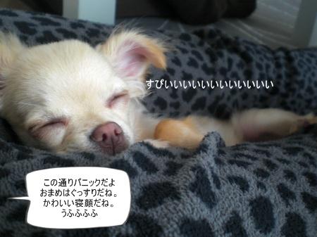new_CIMG3046.jpg