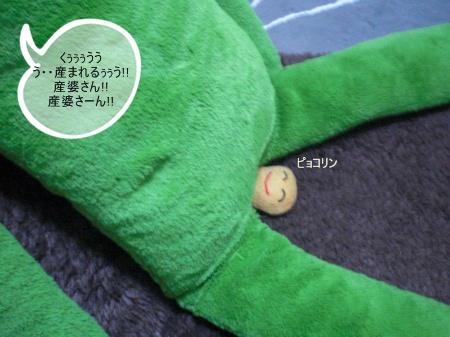 new_CIMG3063.jpg