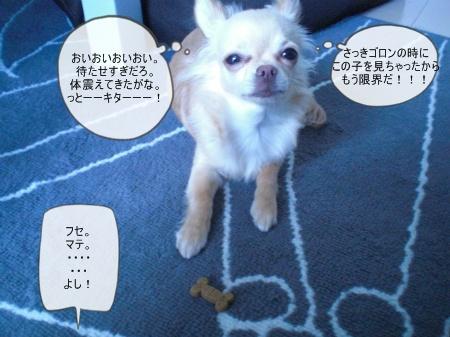 new_CIMG3334.jpg