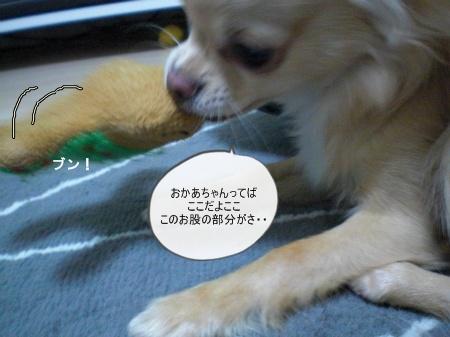 new_CIMG3376.jpg