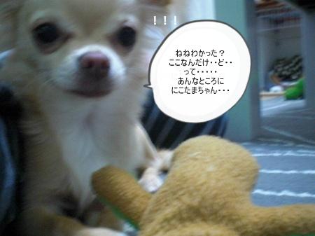 new_CIMG3379.jpg