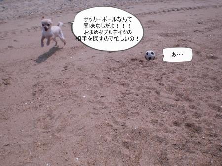 new_CIMG3703.jpg