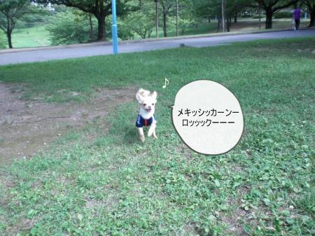 new_CIMG3877.jpg