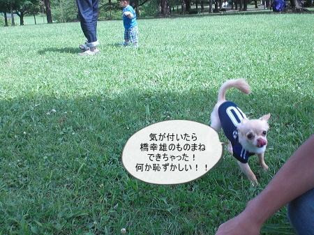 new_CIMG3879.jpg