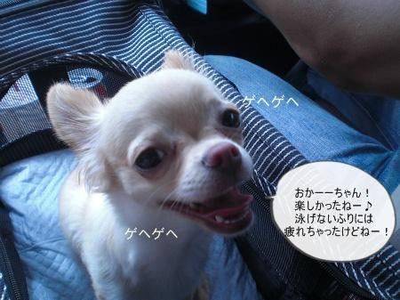 new_CIMG3900.jpg