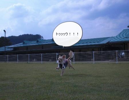 new_CIMG4221.jpg
