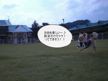 new_CIMG4222.jpg