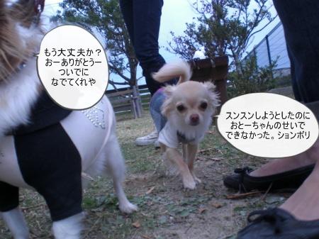 new_CIMG4298.jpg
