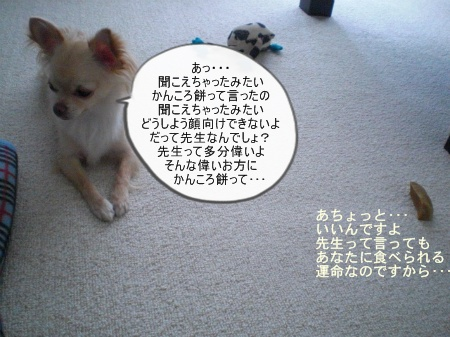 new_CIMG4388.jpg