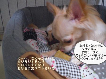 new_CIMG4392.jpg