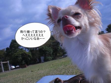 new_CIMG4494.jpg
