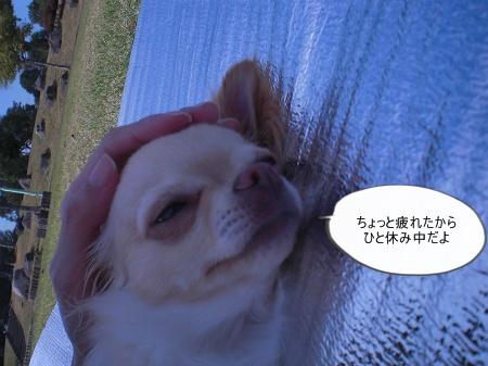 new_CIMG4504.jpg