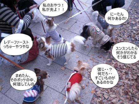 new_CIMG4604.jpg