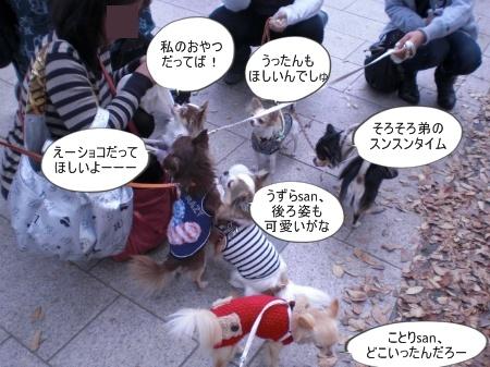 new_CIMG4605.jpg