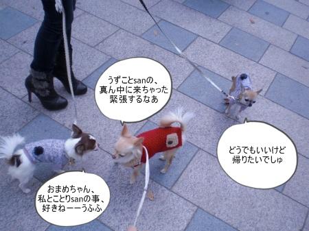new_CIMG4609.jpg