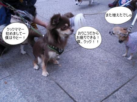 new_CIMG4614.jpg
