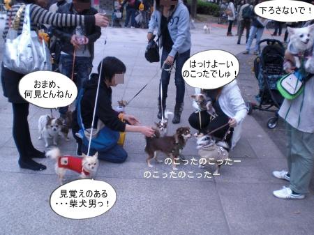 new_CIMG4617.jpg