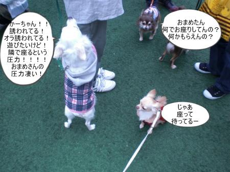 new_CIMG4628.jpg