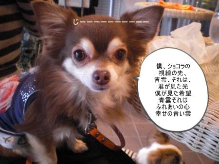 new_CIMG4646.jpg