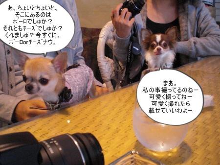 new_CIMG4647.jpg