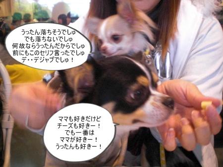 new_CIMG4648.jpg