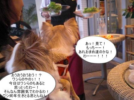 new_CIMG4656.jpg