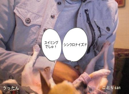 new_CIMG4662.jpg