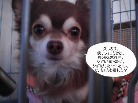 new_CIMG4681.jpg