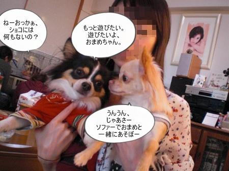 new_CIMG4693.jpg