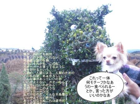 new_CIMG4718.jpg