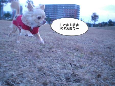 new_CIMG4809.jpg