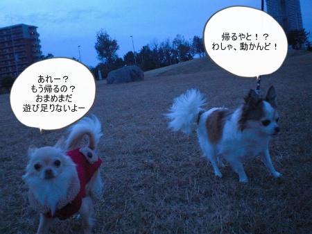 new_CIMG4850.jpg