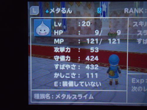 DSC00236[1]_convert_20120701210929