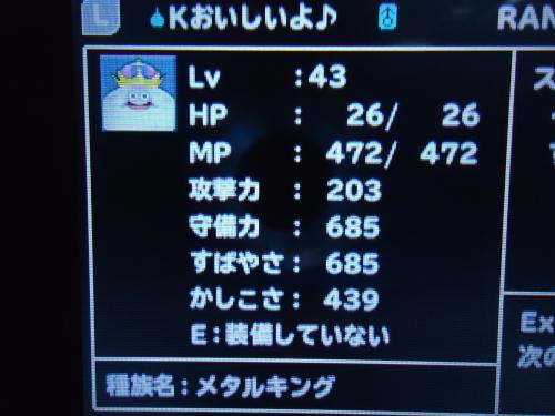 DSC00331[1]_convert_20120717185440