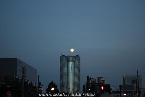 cantik1_20120802073848.jpg