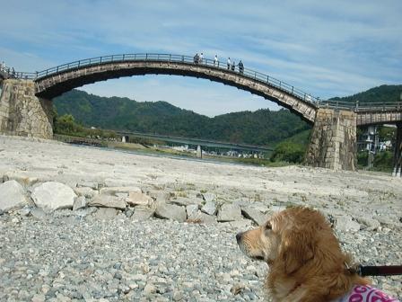 CIMG3117錦帯橋