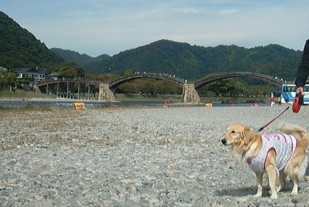 CIMG3099錦帯橋