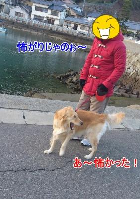 DSC_0215ー1 (282x400)