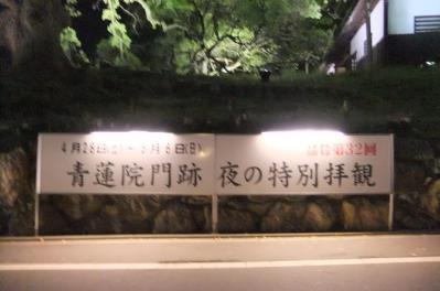 2012_05080358.jpg