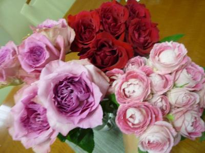 三種類のバラ