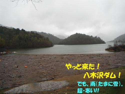 120511_PIC004.jpg